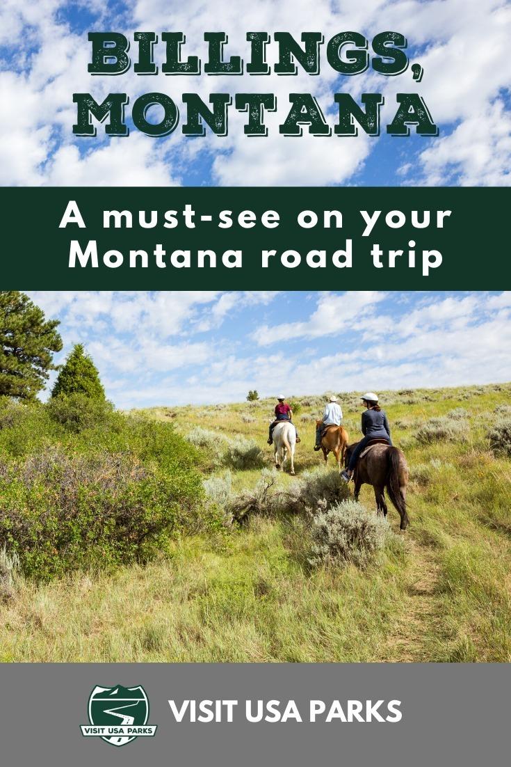 Montana Road Trip Pin