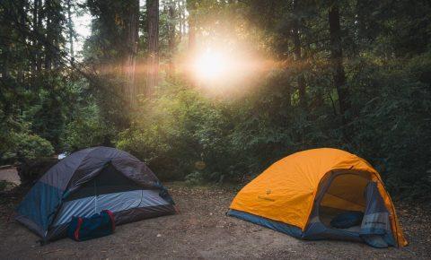 Tents at a campsite