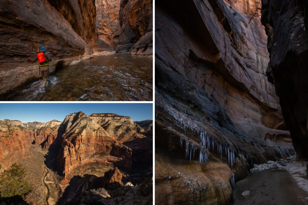 Collage of photos from Zion in the winter