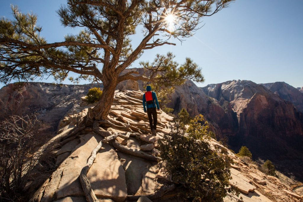 hiking up to Angel's Landing in Zion