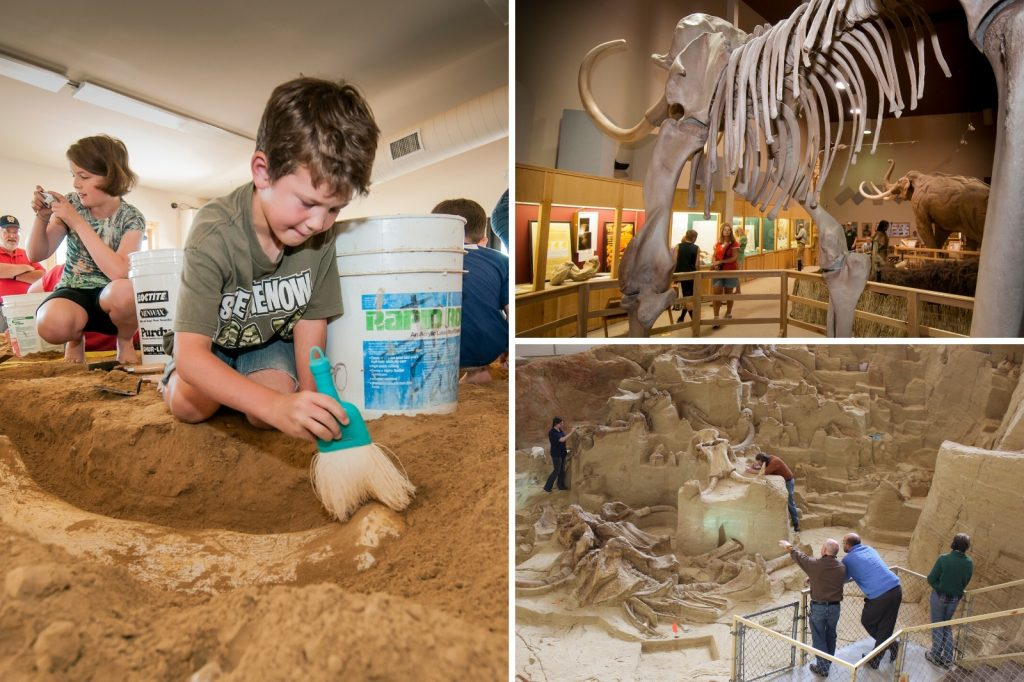 Searching for fossils at the Mammoth Site