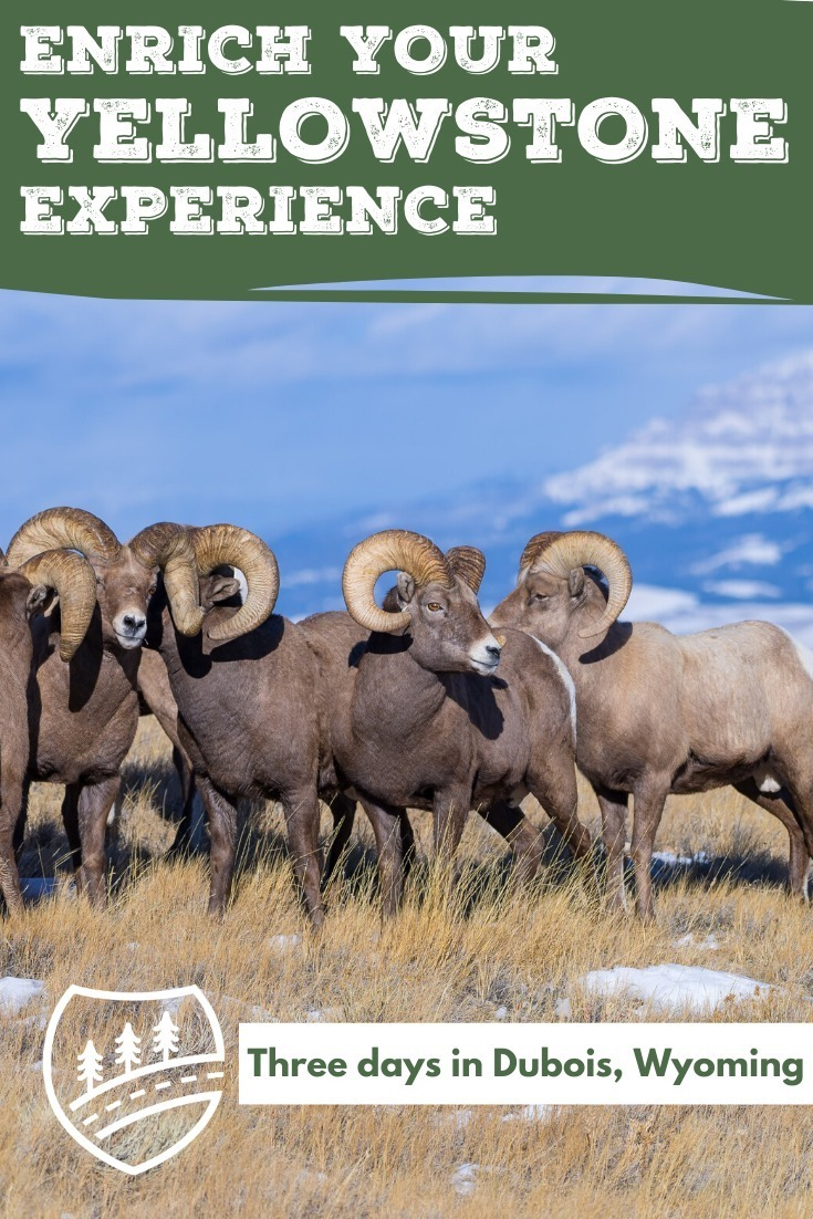 Enrich your Yellowstone Experience in Dubois pin