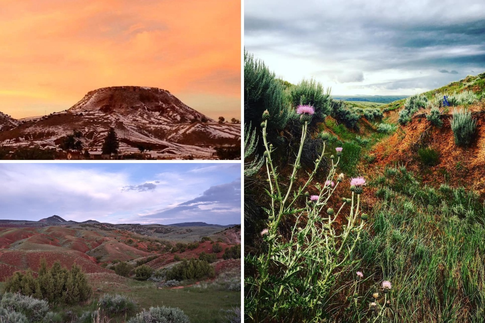 Collage of images of sunsets, landscapes, and wildflowers in Hot Springs County, Wyoming
