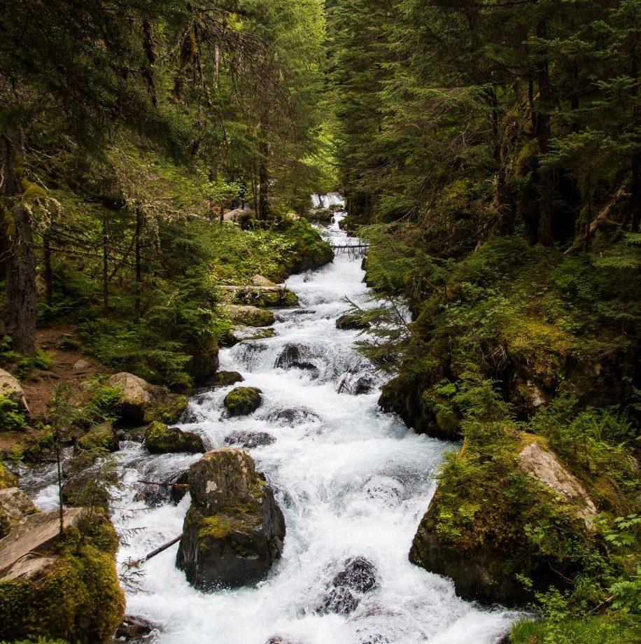 Virgin Creek Falls outside of Anchorage, Alaska.